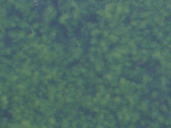 Hanimex Hanimar M.C. auto f=28 1:2.8; Blende 2.8; Bildmitte; 100% Ausschnitt.